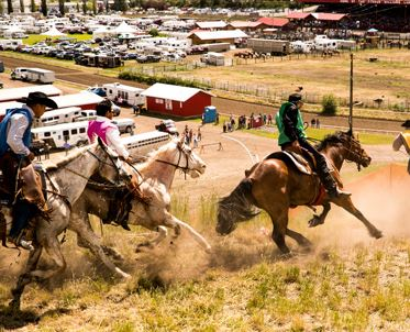 Williams Lake Stampede